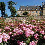Château de Drée - La roseraie
