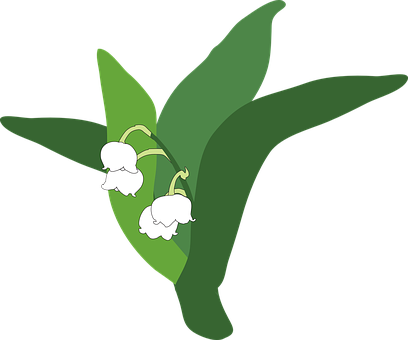lily-of-the-valley-335215__340